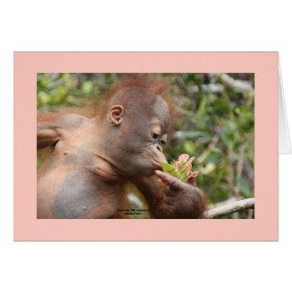 I Love Orangutans Note Card