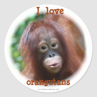 I love orangutans round sticker