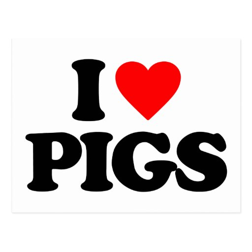 I LOVE PIGS POST CARDS