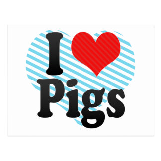 I Love Pigs Postcard