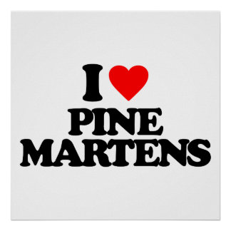 I LOVE PINE MARTENS POSTERS