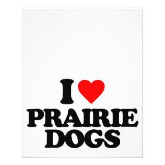 I LOVE PRAIRIE DOGS FLYER