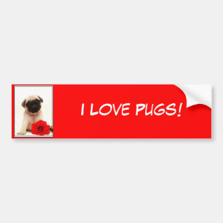 I Love pugs Pug puppy bumper sticker