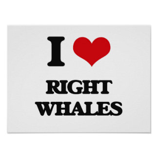 I love Right Whales Poster