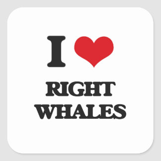 I love Right Whales Square Stickers