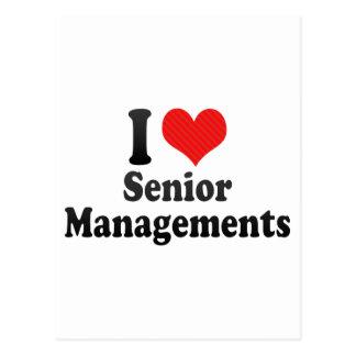I Love Senior Managements Post Card