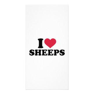 I love Sheeps Custom Photo Card