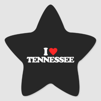 I LOVE TENNESSEE STAR STICKERS