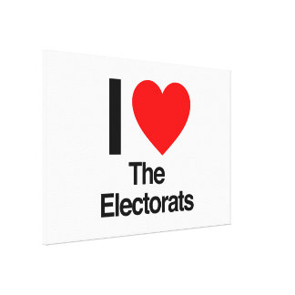 i love the electorats gallery wrapped canvas