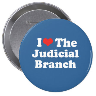 I LOVE THE JUDICIAL BRANCH - .png Pinback Buttons