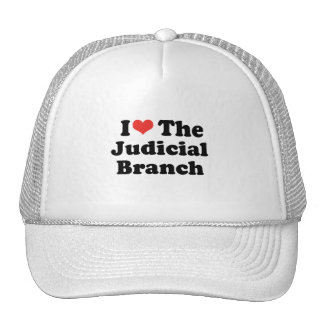 I LOVE THE JUDICIAL BRANCH - .png Hat