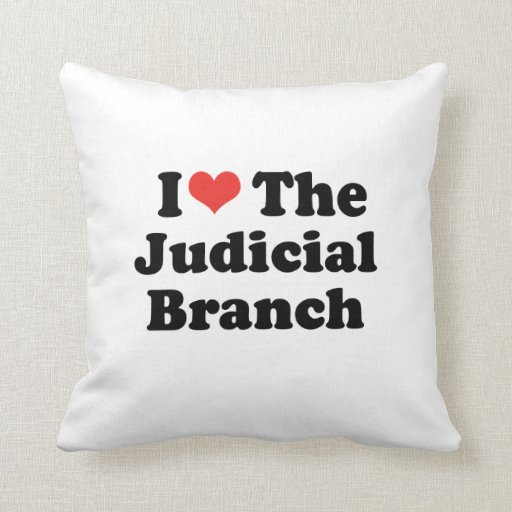 I LOVE THE JUDICIAL BRANCH - .png Pillows