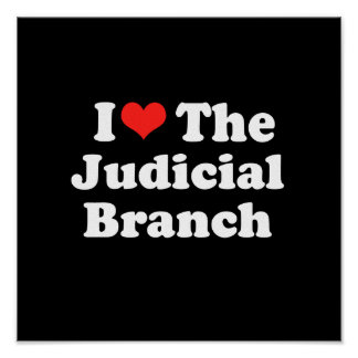 I LOVE THE JUDICIAL BRANCH png Posters