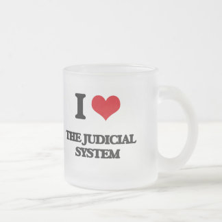 I Love The Judicial System Frosted Glass Mug