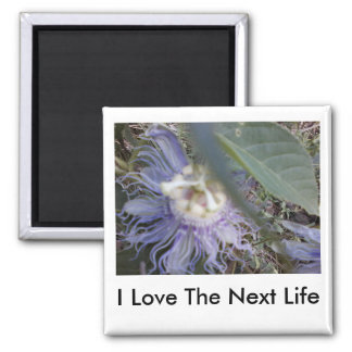 I love the next life square magnet