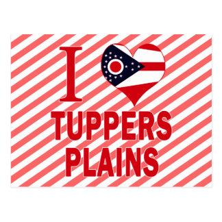 I love Tuppers Plains, Ohio Postcard