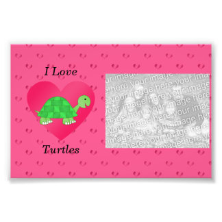 I love turtles pink hearts photograph