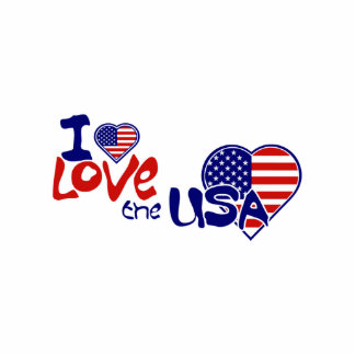 I Love USA American Heart Pin Photo Sculpture Badge