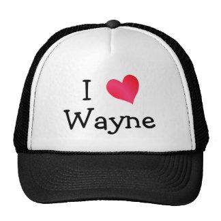 I Love Wayne Cap