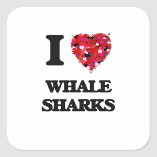 I love Whale Sharks Square Sticker