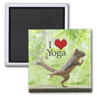 I Love Yoga Squirrel Magnets