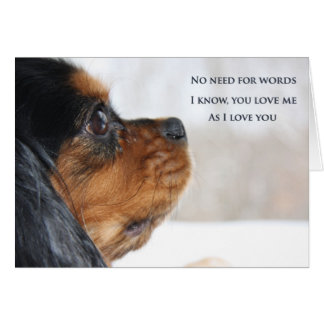 I Love You Cavalier King Charles Spaniel Card