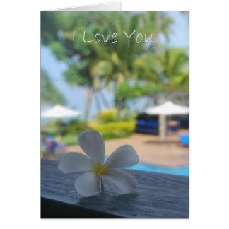 I Love You-Fijian Flower Card
