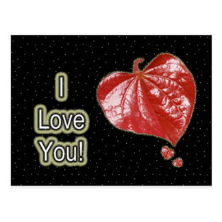I Love You Greeting - Young Redbud Leaf in Spring Postcard