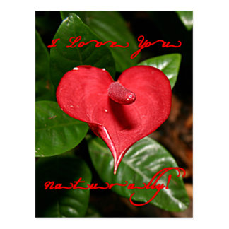 I Love You Naturally! - Valentine's Day + Meanings Postcard