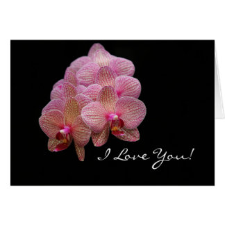 I love you - Orchid against black Card