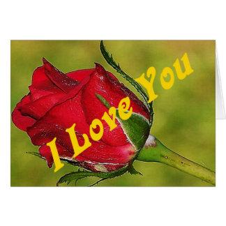I love you Rose Bud Card