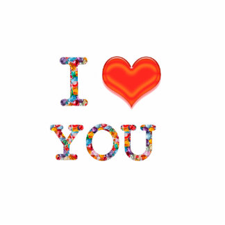 I love you standing photo sculpture