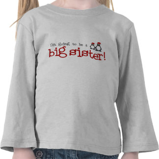 I m going to be a big sister t-shirt