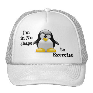 I m in No shape to Exercise Mesh Hat