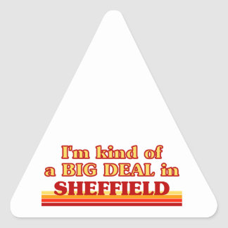 I´m kind of a big deal in Sheffield Triangle Sticker