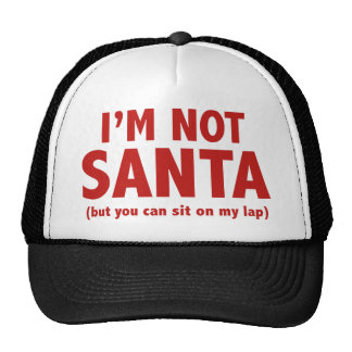 I'm Not Santa (But You Can Sit On My Lap) Cap