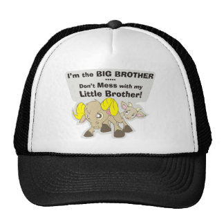 I'm the Big Brother, Don't Mess my Little Brother Trucker Hat