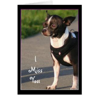I Miss You Chihuahua Greeting Card