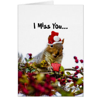 I Miss You Christmas Squirrel Greeting card