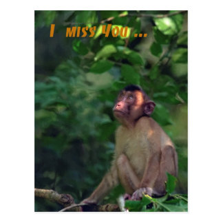I miss you greeting card postcard