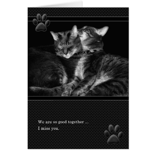 I Miss You Grey Tabby Cats Card