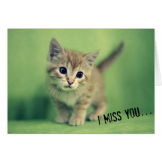 I Miss You Kitten Greeting Card