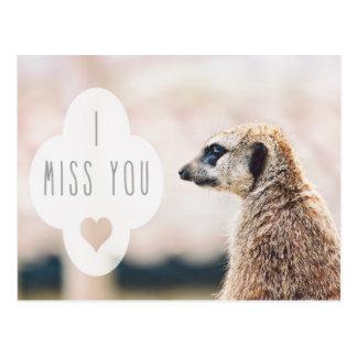 I Miss You Meerkat Postcard