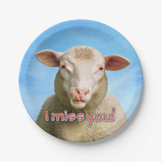 I miss you! paper plate