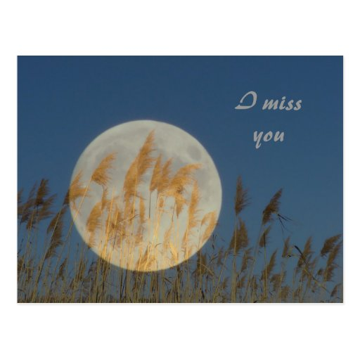 I miss you post card