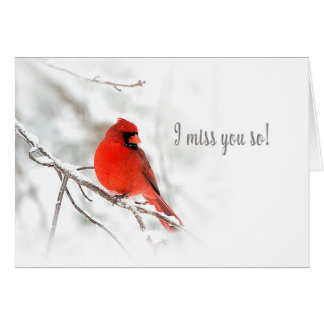 I miss you - Red Cardinal Snow Scene Card