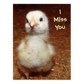 I miss you! Sad Baby Chick Postcard