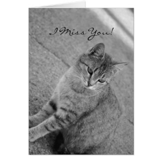 I Miss You Tabby Cat Photograph Card