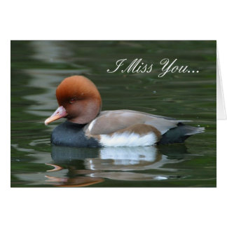 I Miss you Wild Duck Greeting Card