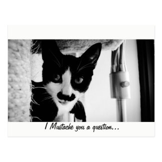 I Mustache You A Question... Postcard